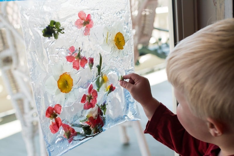 nature activities for young kids