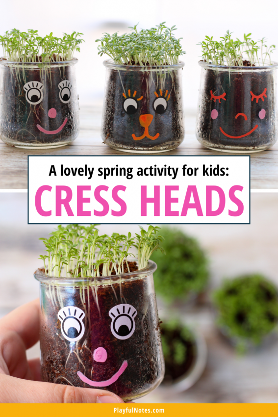 Growing cress heads with kids Discover 12 easy and fun spring activities for kids that you can quickly prepare for your little ones! - Children's activities | Spring activity ideas