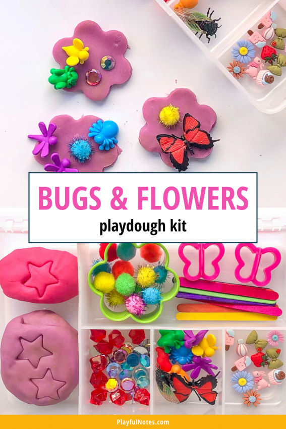 Bugs and flowers playdough kit