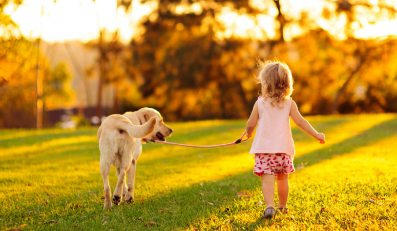 The 5 powerful things that will help your child be more independent